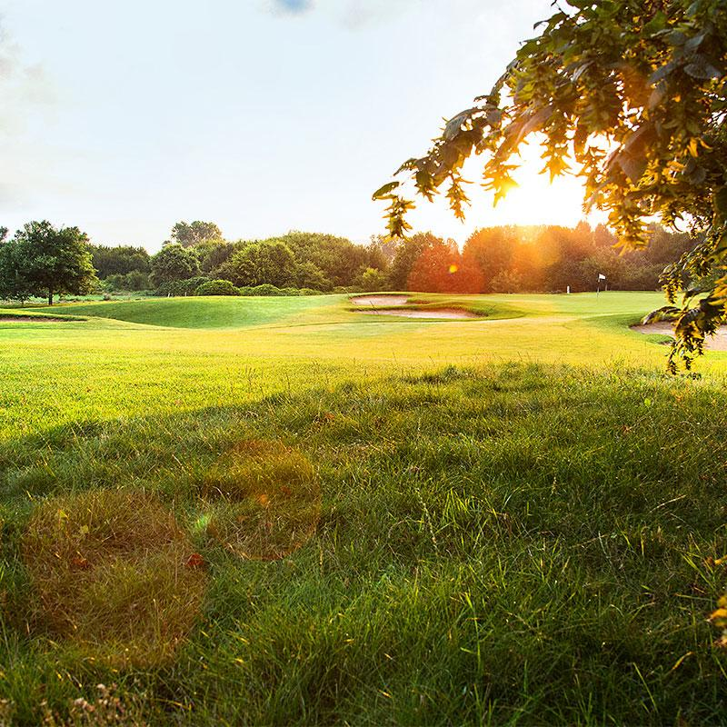 Client: Golf Club Heddesheim Gut Neuzenhof/ Gutperle Golf Courses